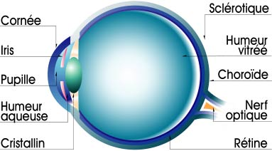 cataract-information.com